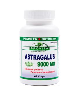 provita_nutrition_astragalus_9000_naturaheal.ca_1
